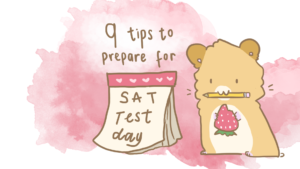 Getting Ready for Test Day- Things to Pack for Your SAT